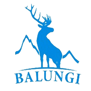 BALUNGI logo
